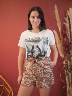 Short Brown Zebra